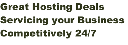 Great Hosting Deals  Servicing your Business  Competitively 24/7